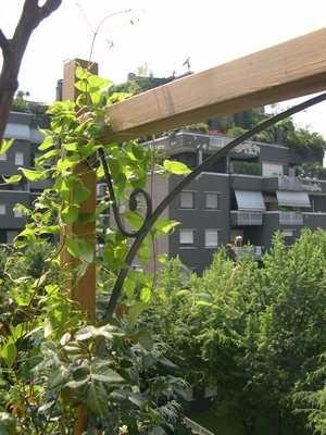 Archi per rampicanti in ferro battuto fai da te - Archi per giardino ...