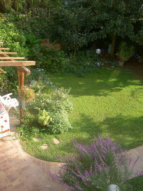 Il mio giardino piccolo foto compagnia del giardinaggio - Giardino piccolo foto ...